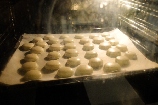 Little macarons in the oven
