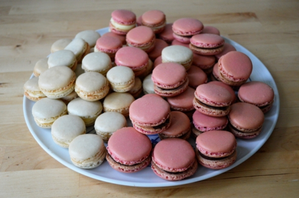 All the macarons