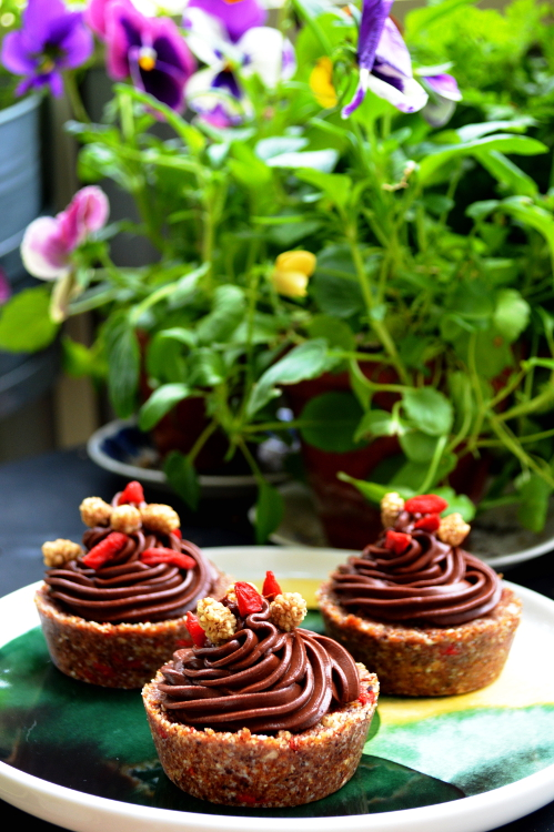 2women2cats: Raw Goji- & Mulberry Cupcakes with Salted Chocolate Frosting